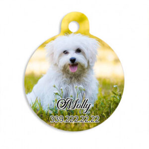 medaglietta-animali-cane-gattyo-personalizzata-kreilab-avigliana-stampa-foto-regali